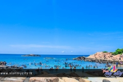 Crowded Bay