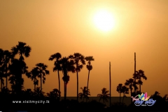 Sunset in Jaffna
