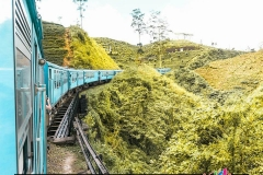 Train ride through the Tea plantations of Sri Lanka